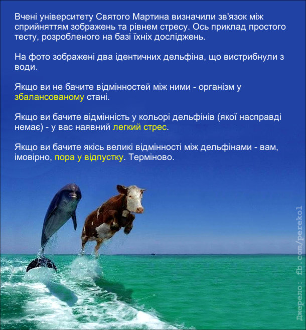 Смішний тест. На фото: Дельфін і корова, що вистрибнули з води. Вчені університету Святого Мартина визначили зв'язок між сприйняттям зображень та рівнем стресу. Ось приклад простого тесту, розробленого на базі їхніх досліджень.  На фото зображені два ідентичних дельфіна, що вистрибнули з води.  Якщо ви не бачите відмінностей між ними - організм у збалансованому стані.  Якщо ви бачите відмінність у кольорі дельфінів (якої насправді немає) - у вас наявний легкий стрес.  Якщо ви бачите якісь великі відмінності між дельфінами - вам, імовірно, пора у відпустку. Терміново.