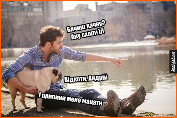 Жарт про пса. На березі сидять хлопець і його собака (мопс). Хлопець: - Бачиш качку? Ану схопи її! Пес: - Відкоти, Андрій. І припини мене мацати