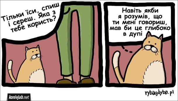 Господар і кіт. Господар: - Тільки їси, спиш і сереш. Яка з тебе користь? Кіт подумки: - Навіть якби я розумів, що ти мені говориш, мав би це глибоко в дупі