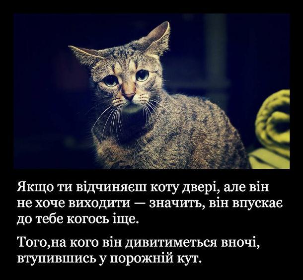 Кіт в дверях. Якщо ти відчиняєш коту двері, але він не хоче виходити - значить він впускає до тебе когось іще. Того, на кого він дивитиметься вночі, втупившись у порожній кут