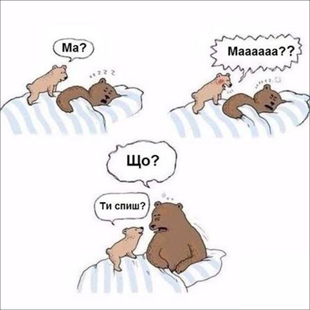 Смішний малюнок. Діти будять зранку. Ведмедиця спить в ліжку. До неї на ліжко вилізло медвежа і будить: Ма?... Маааааа?? Ведмедиця, прокинувшись: - Що? Ведмежа: - Ти спиш?