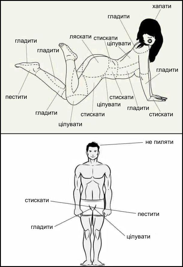 Жарт про ерогенні зони жінки і чоловіка. В жінки ерогенні зони по всьому тілу і їх треба, гладити, цілувати, ляскати, пестити, стискати, хапати (коси). В чоловіка пеніс (стискати, гладити, пестити, цілувати) і голова (не пиляти)