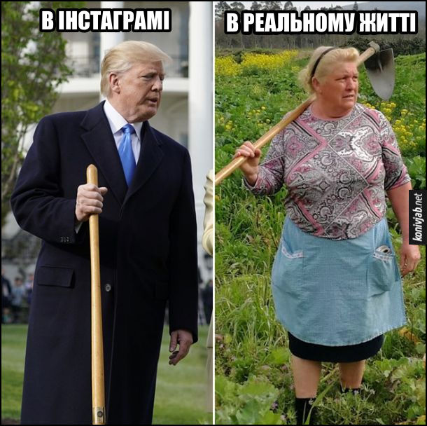 Прикол про Трампа. Як відрізняються фото в соцмережах і в реальному житті. В інстаграмі - Дональд Трамп з лопатою. В реальному житті - жінка, схожа на Трампа, з сапою