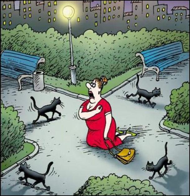 Прикол Чорні коти кодять по всіх стежках на перехресті. В центрі перехрестя на колінах стоїть жінка і хреститься