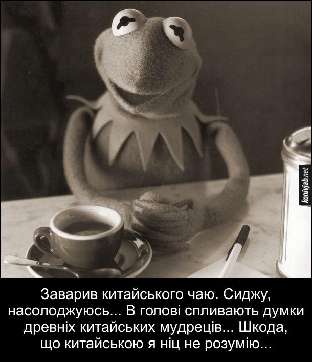 Анекдот про чай. Заварив китайського чаю. Сиджу, насолоджуюсь... В голові спливають думки древніх китайських мудреців... Шкода, що китайською я ніц не розумію... Керміт з чашкою чаю