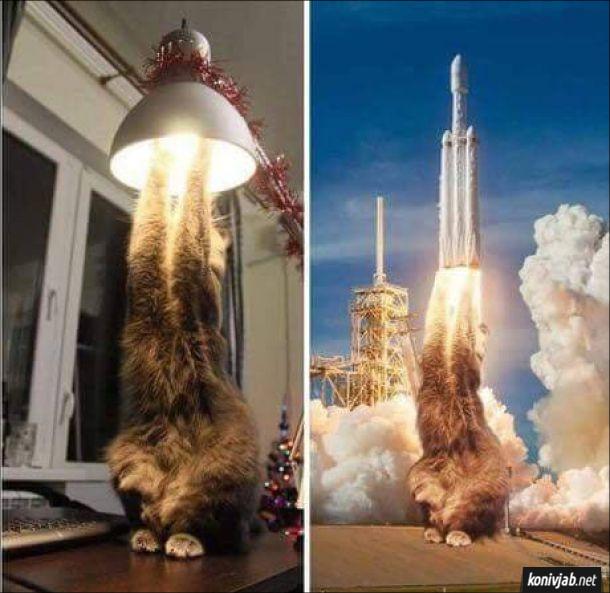 Фотошоп Кіт тягне лапки до лампочки, що горить. Схоже ніби вогонь і дим з-під ракети