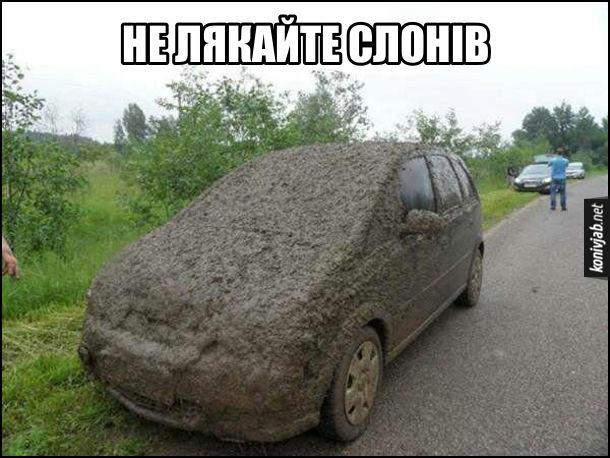 Прикол про слонів. Автомобіль повністю вкрити лайном (або болотом). Не лякайте слонів, щоб вони вас не обдристали