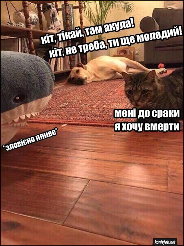 Прикол Кіт і собака. Кіт лежить накилимі і гукає до кота: - Кіт, тікай, там акула! Кіт, не треба, ти ще молодий. Кіт сидить з краю килима і каже: - Мені до сраки, я хочу в м е рти. До нього по підлозі зловісно пливе інгашкова акула
