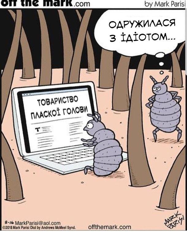 """Прикол. Смішний малюнок про вошей. Воша-самець сидить перед ноутбуком і читає сайт """"Товариство пласкої голови"""". Воша-самиця побачила це і думає: - Одружилася з ідіотом..."""
