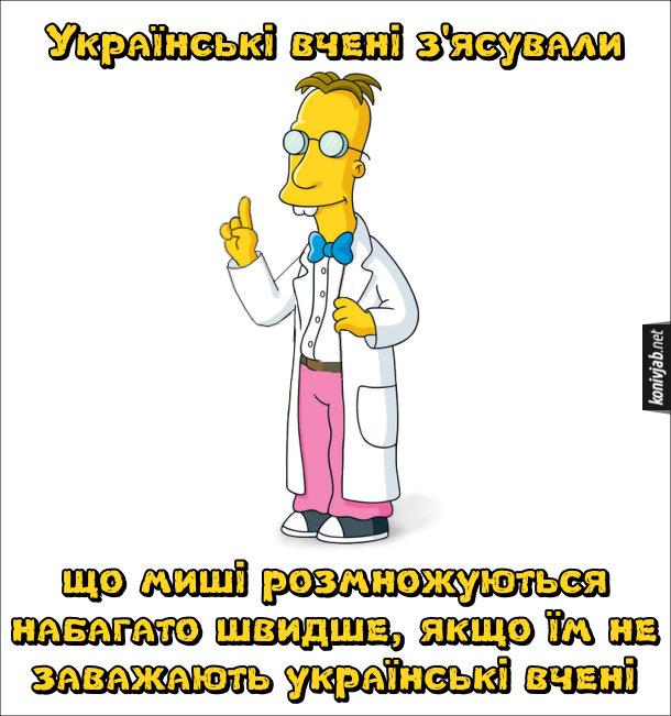 Жарт про українських вчених. Українські вчені з'ясували, що миші розмножуються набагато швидше, якщо їм не заважають українські вчені