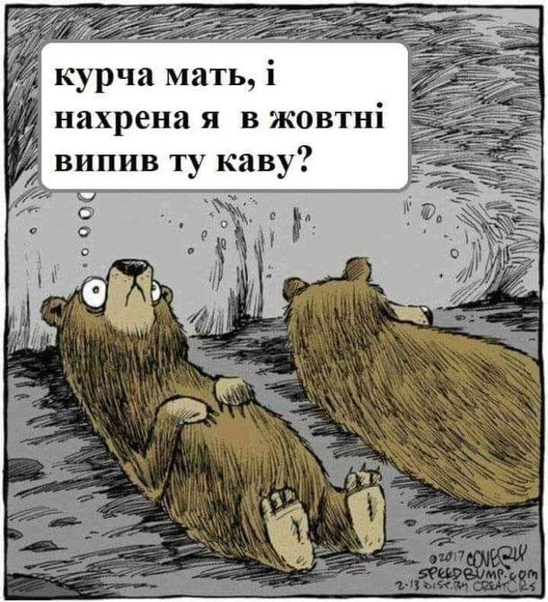 Ведмеді в сплячці. Один з ведмедів не може заснути і думає: - Курча мать, і нахрена я в жовтні випив ту каву?