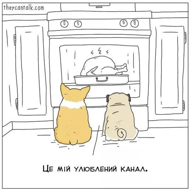 Смішний малюнок про домашніх тварин. Двоє песиків сидять перед духовкою і дивляться, як там печеться курка. Пес: - Це мій улюблений канал