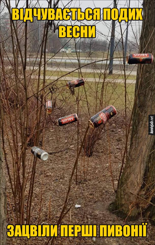 Фотоприкол про весну. Відчувається подих весни - зацвіли перші пивонії. Банки з-під пива висять на гілках