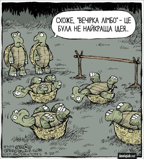 """Смішний малюнок про черепах. Встановлено перекладину для танцю лімбо, біля неї на спинах лежать черепахи. Підійшли дві інші черепахи , одна з них каже: - Схоже, """"Вечірка Лімбо"""" - це була не найкраща ідея..."""