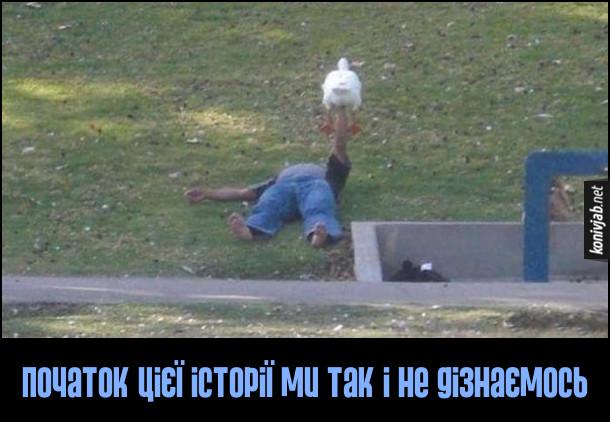 Смішне фото. Чоловік лежить на траві і тримає гусака на витягнутій руці. Початок цієї історії ми так і не дізнаємось
