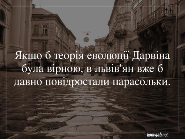 Анекдот про дощі у Львові. Якщо б теорія еволюції Дарвіна була вірною, в львів'ян вже б давно повідростали парасольки.