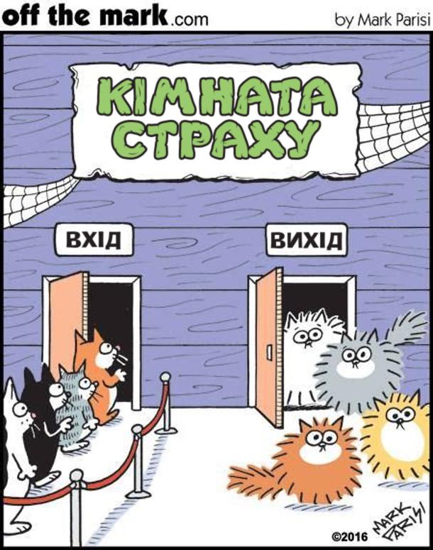 Смішний малюнок Кімната страху для котів. Коти заходять нормальні, а виходять з шерстю дибки