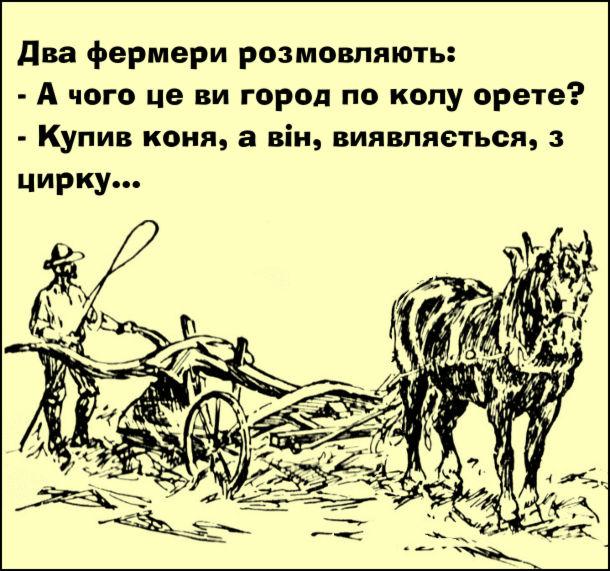 Анекдот про фермерів. Два фермери розмовляють: - А чого це ви город по колу орете? - Купив коня, а він, виявляється, з цирку...
