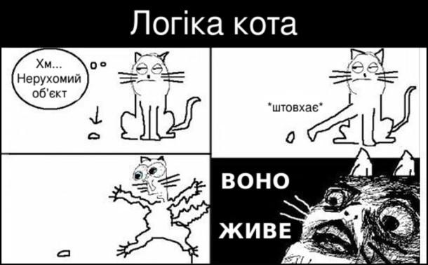 Мем логіка кота. Кіт дивиться на якийсь предмет на підлозі: - Хм... Нерухомий об'єкт. Потім штовхає предмет лапою і здивовано вигукує:  - Воно живе!