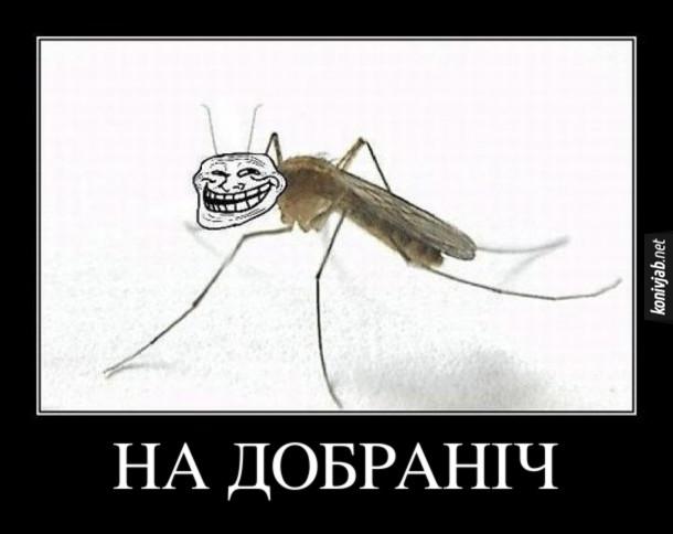 Демотиватор Комар єхидно сміється і каже: - На добраніч