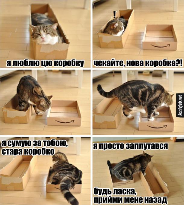 Прикол Кіт і дві коробки. Кіт лежить в коробці: - Я люблю цю коробку... Чекайте, нова коробка?! Кіт переліз в другу коробку, але з сумом дивиться на першу: - Я сумую за тобою, стара коробко. (перелазить до першої) Я просто заплутався, будь ласка, прийми мене назад