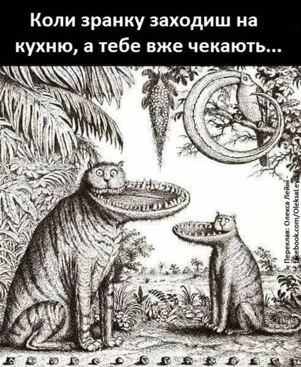 Смішний малюнок про котів. Коли зранку заходиш на кухню, а тебе вже чекають коти