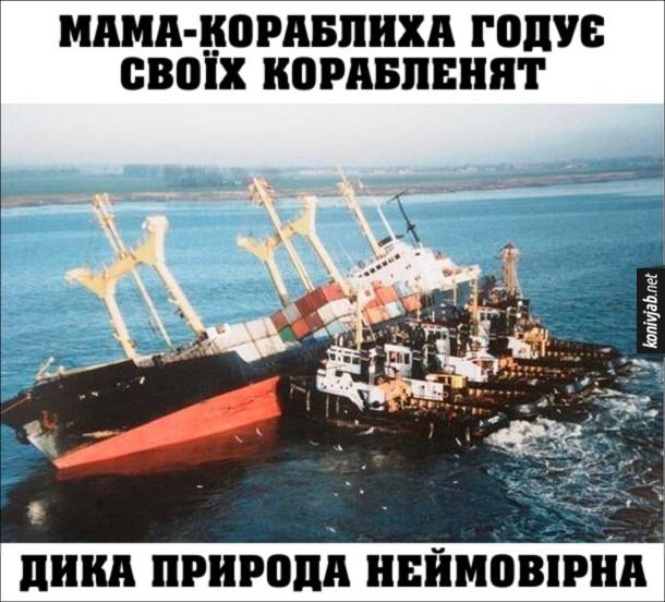 Прикол про кораблі. Мама-кораблиха годує своїх корабленят. Дика природа неймовірна. На фото: Похилений вантажний корабель і буксири
