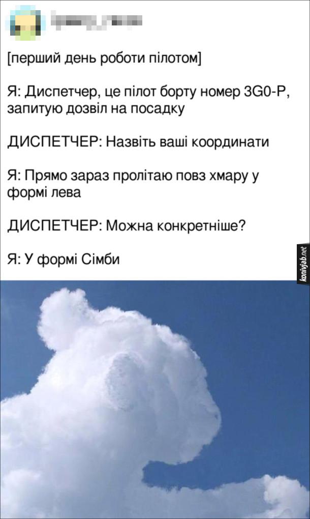 Прикол про пілота. [перший день роботи пілотом]. Я: Диспетчер, це пілот борту номер 3G0-P, запитую дозвіл на посадку. Диспетчер: Назвіть ваші координати. Я: Прямо зараз пролітаю повз хмару у формі лева. Диспетчер: Можна конкретніше? Я: У формі Сімби