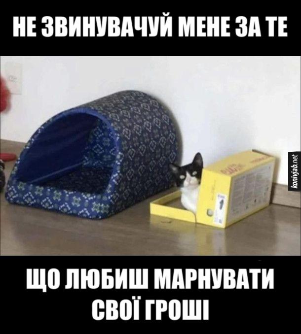 Мем Будиночок для кота. Господар купив  котові будку, а кіт туди не пішов а ліг в картонну коробку. Кіт: - Не звинувачуй мене за те, що любиш марнувати свої гроші