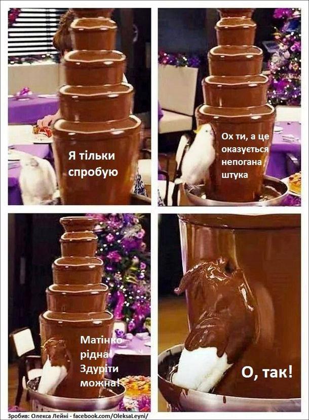 Прикол Папуга і шоколадний фонтан. Папуга: - Я тільки спробую (трохи сьорбнув) Ох, а це оказується непогана штука (занурив голову у фонтан) Матінко рідна! Здуріти можна! (весь став під шоколадний фонтан) О, так!
