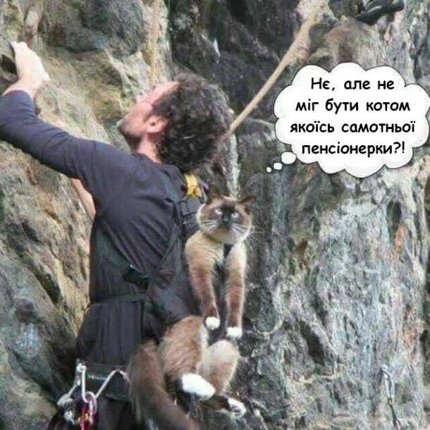 Прикол Кіт-альпініст. Альпініст лізе по скелі, а на спині в нього в дитячій кенгурусі висить кіт і бідкається: - Нє, але не міг бути котом якоїсь самотньої пенсіонерки?!